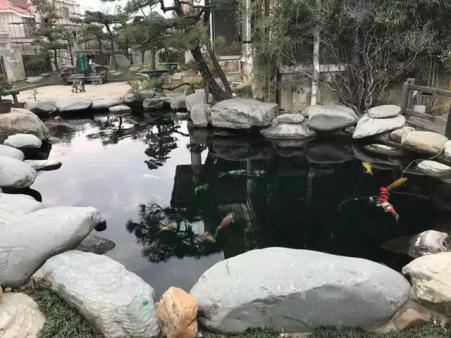 鱼池过滤水处理