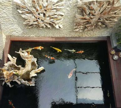 别墅鱼池过滤